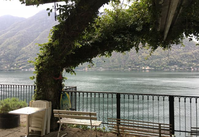 Apartment in Nesso - SWANS NEST LUXURY APARTMENT ON THE LAKE